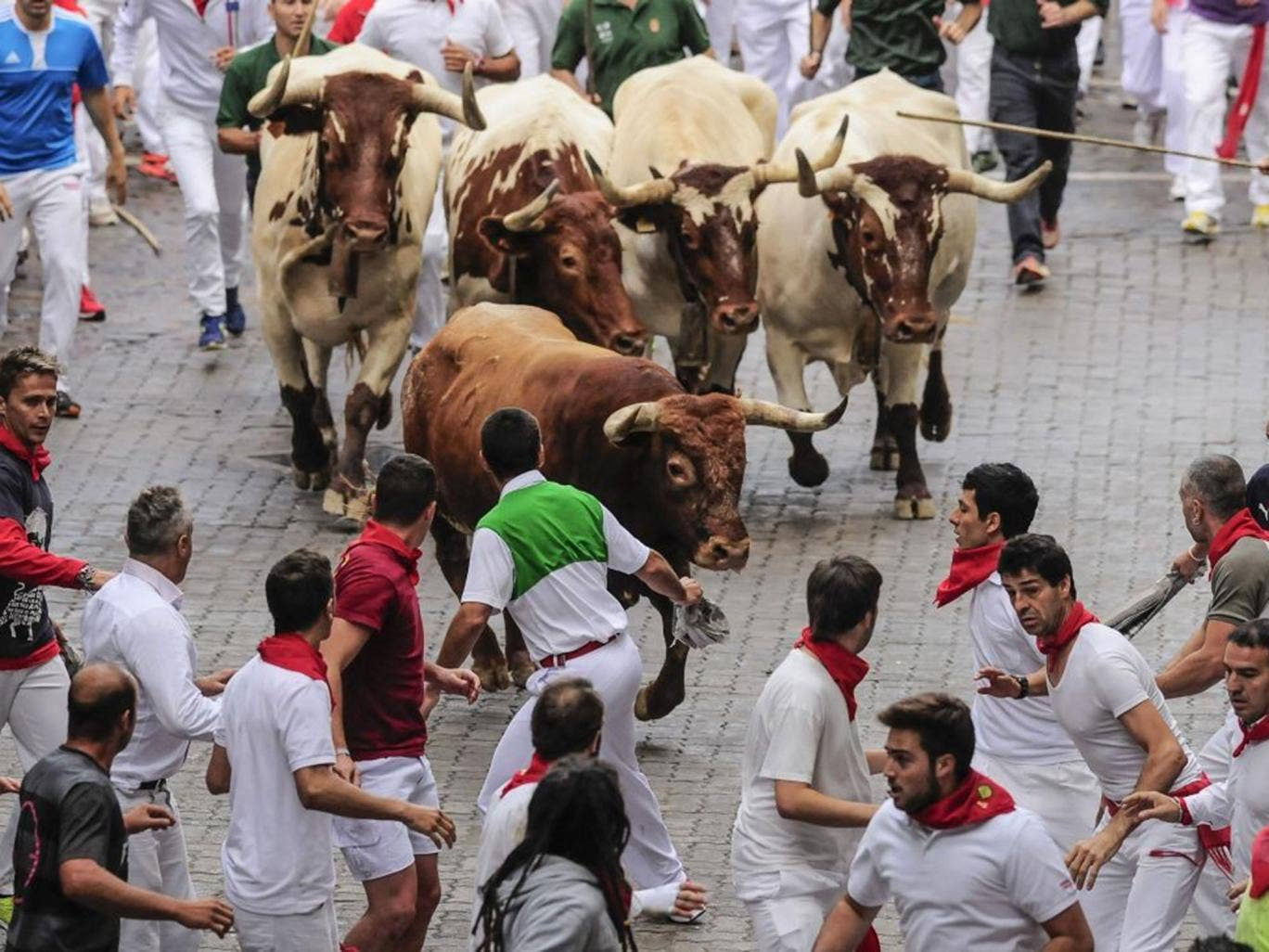 Runners run ahead of a ''Miura''  fighting bull which tossed some runners during the running of the bulls, at the San Fermin festival, in Pamplona, Spain, on Monday, 14 July, 2014