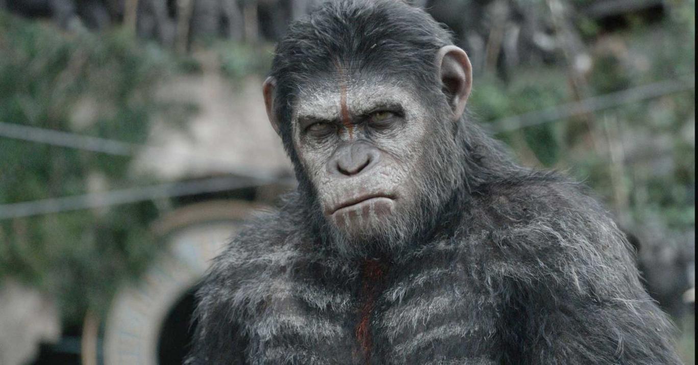 Great ape: Andy Serkis returns as Caesar