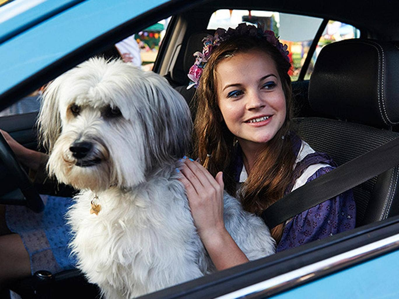 Cheery but half-baked canine caper: 'Pudsey the dog: The movie'