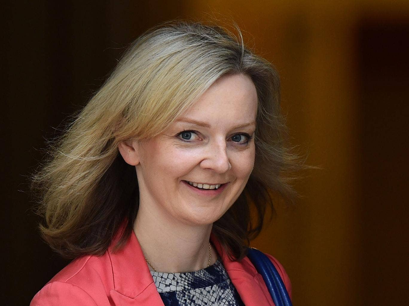 Liz Truss: Her name cropped up in every story about Tory A-list resistance