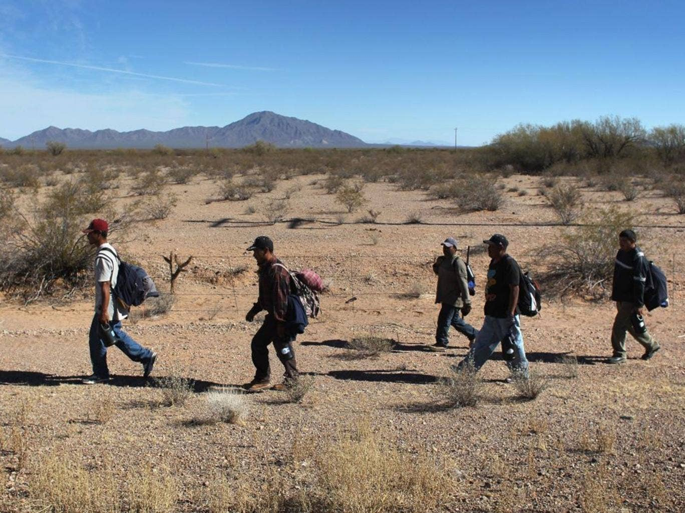 In the heat of the day: Illegal migrants walk through the Sonoran Desert after crossing into the US