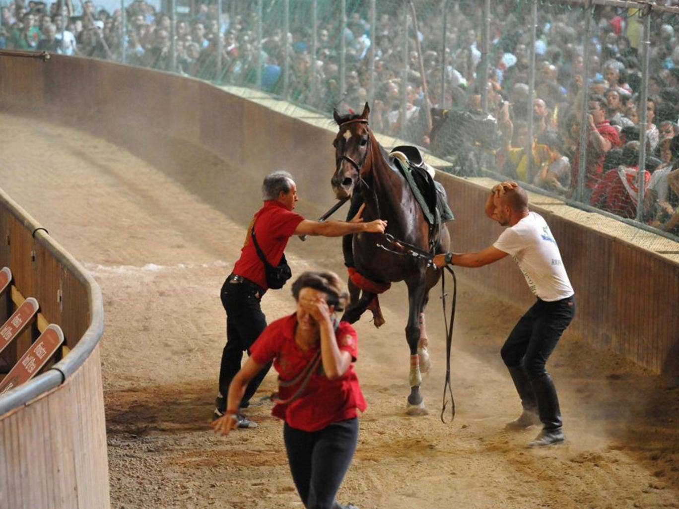 The two horses, Oracle Force and Golden Storming, were quickly destroyed by vets. The riders suffered only minor injuries