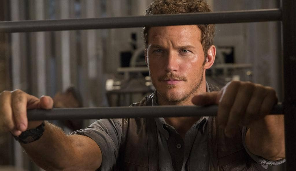 Chris Pratt Shares Motivational Message For Artists