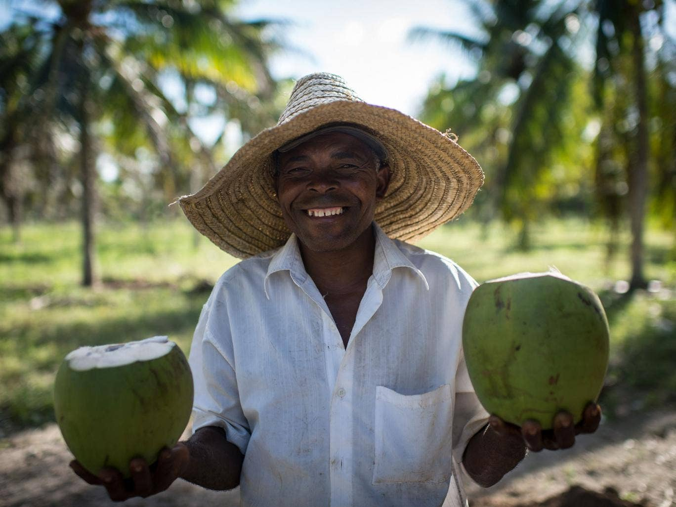Tropical taste: a coconut farmer in Brazil shows off his wares