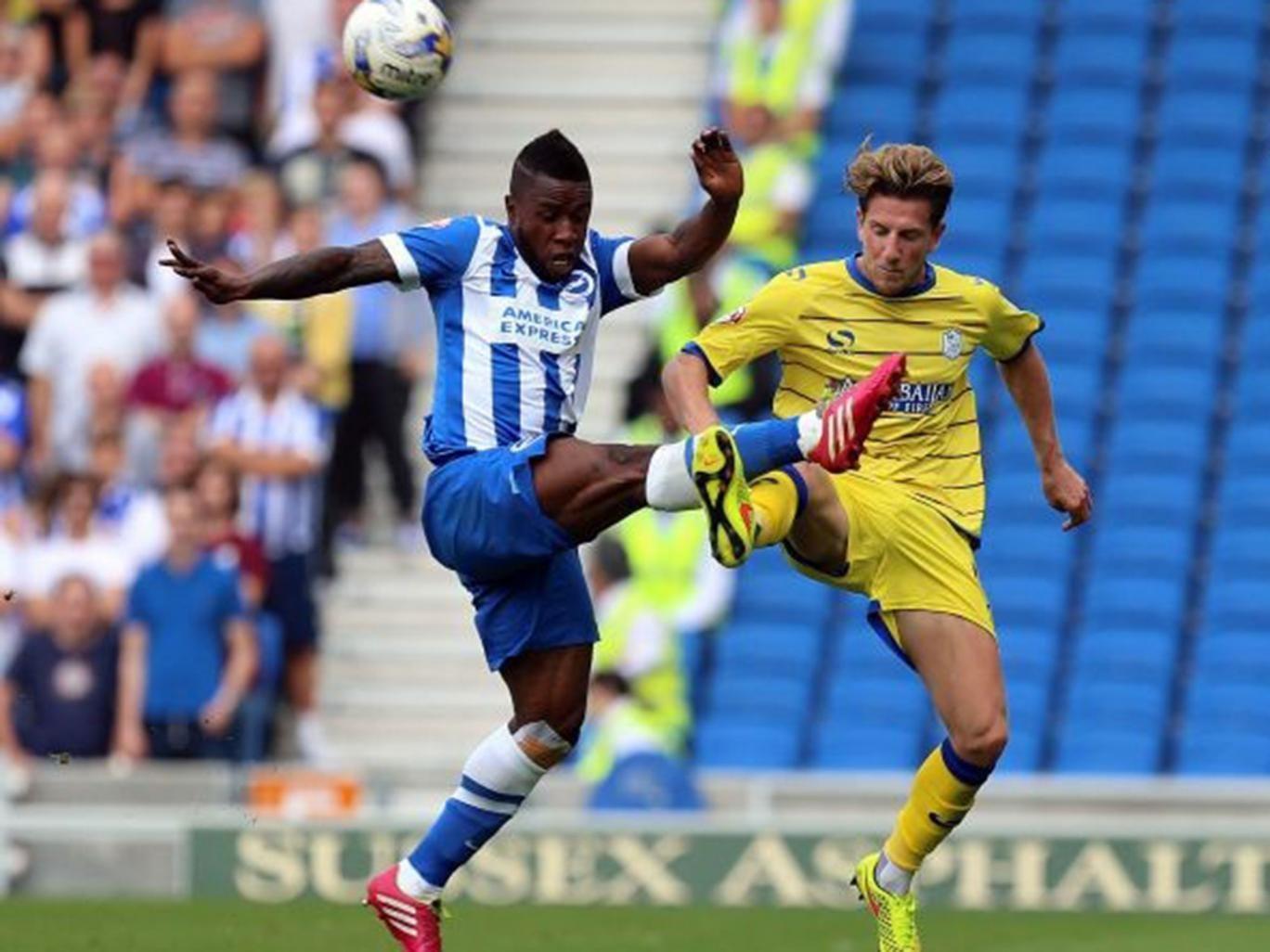 Kazenga Lua Lua challenges Sam Hutchinson during Brighton's defeat to Sheffield Wednesday