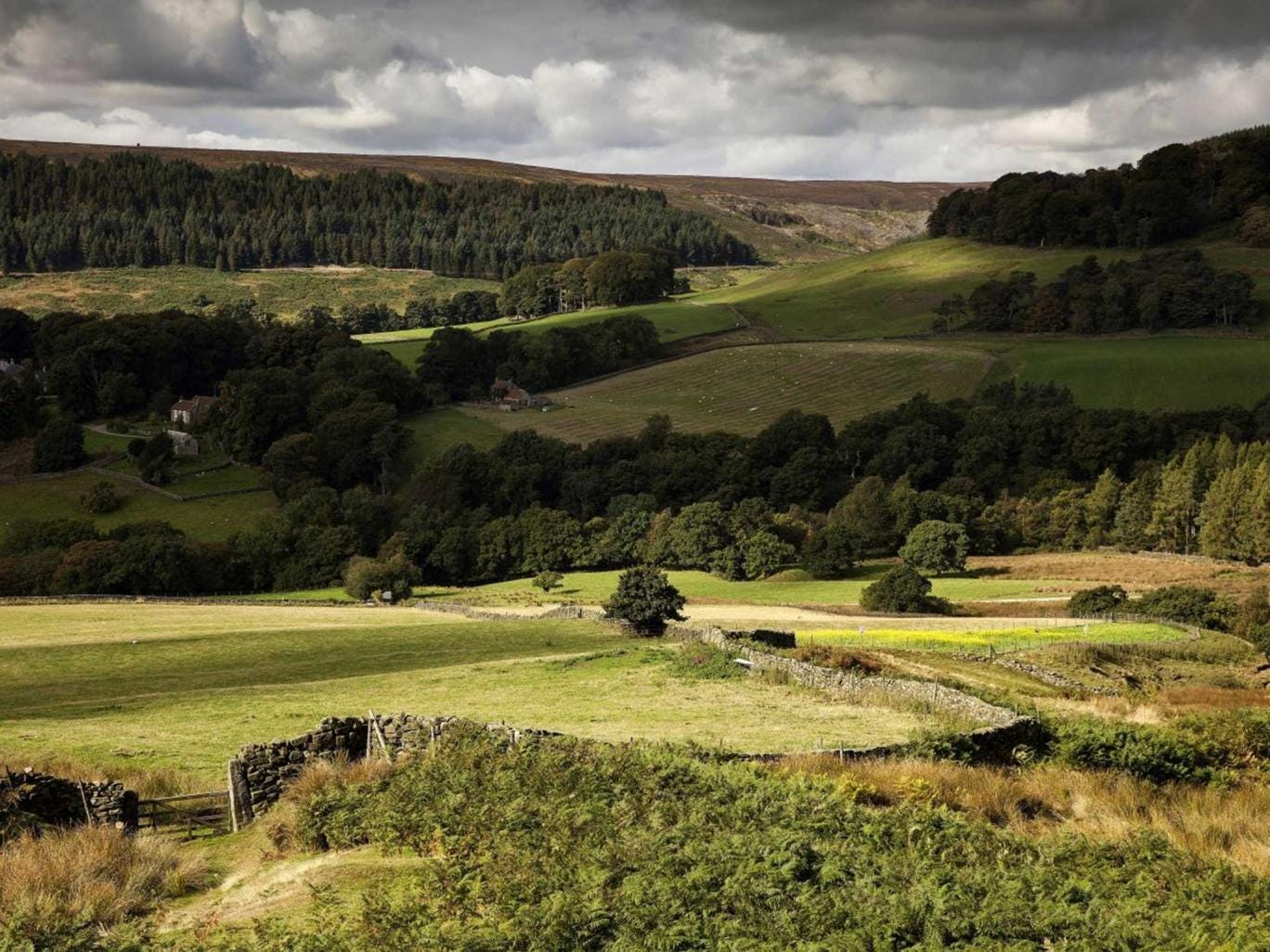 Much loved: The North York Moors are meant to be protected