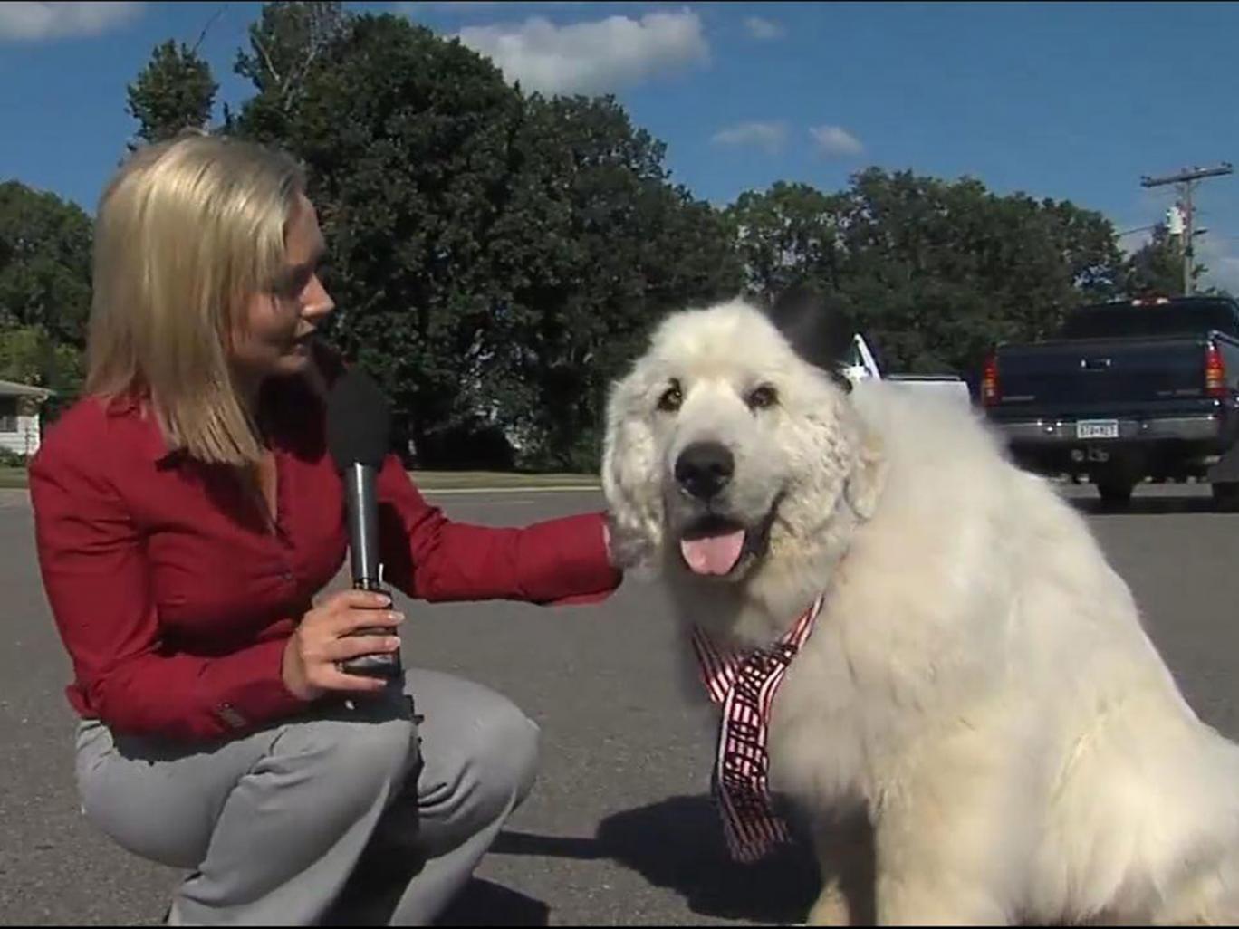 Duke has been elected the new mayor of Cormorant in Minnesota.
