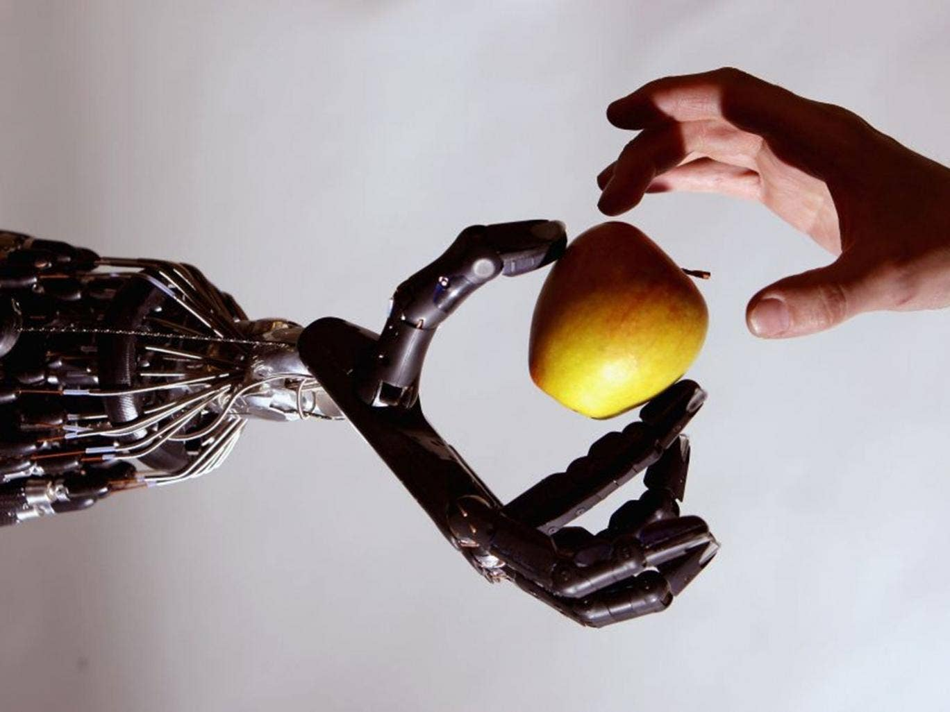 The rise of robots will eventually make human brain power all but redundant in the workplace