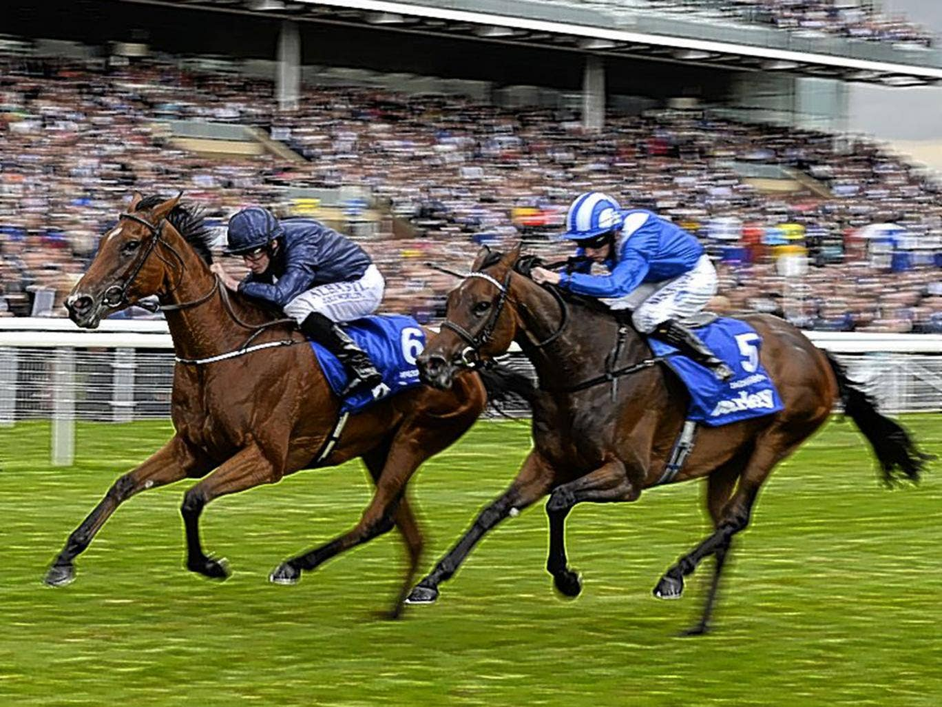 Taghrooda (right) has no answer to the late challenge of Tapestry in the Yorkshire Oaks