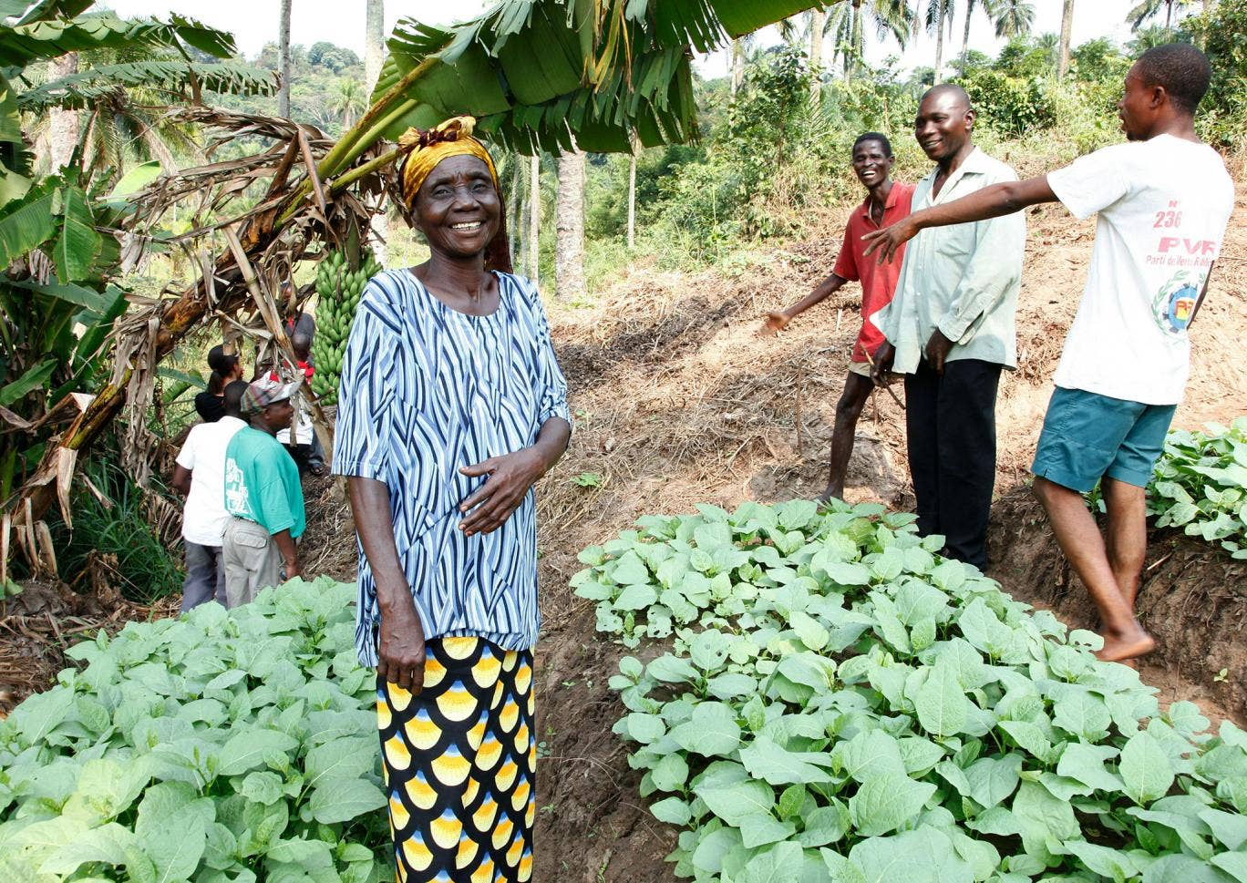 Members of the community farming group at work in their community fields near the town of Masi Manimba, Bandundu Province, DRC.