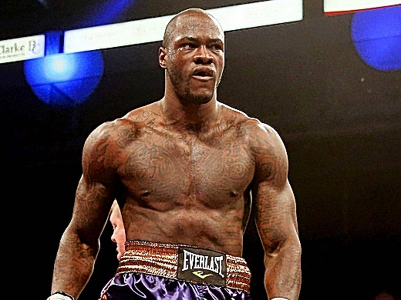 deontay wilder - photo #13