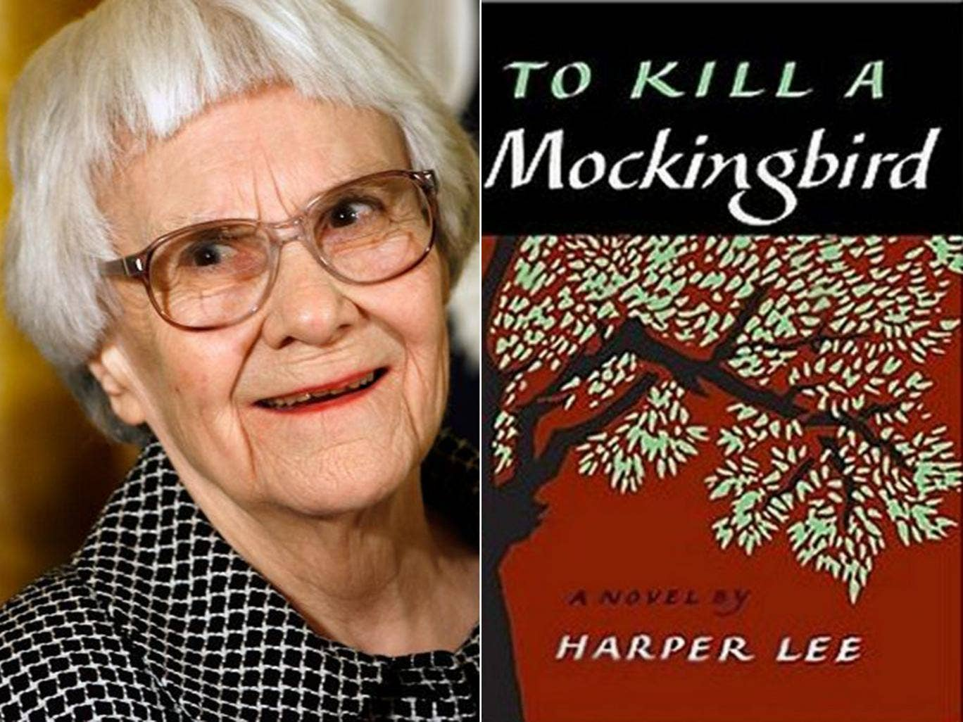 an analysis of harper lees story to kill a mockingbird The future of the forthcoming broadway adaptation of harper lee's to kill a mockingbird to her enduring 1960 masterpiece in exchange for $100,000 and a promise that the play would remain true to the original story is a different take on 'mockingbird' than harper lee's.