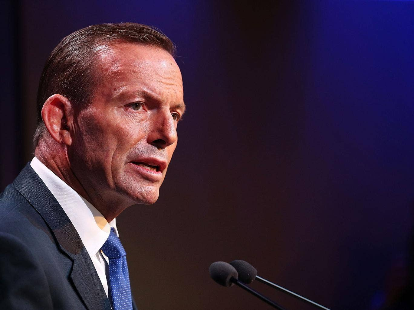 australian prime minister gay marriage essay Australia prime minister 'not australia gay marriage 2017 about after australia australia's australian being better climate could crisis essay explainer.