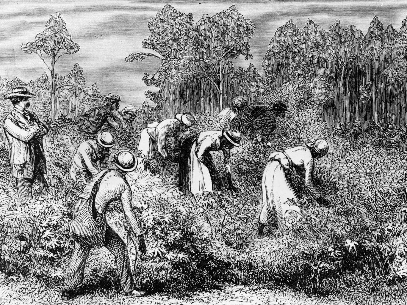 the events that affected slavery in america Many factors played a part in the existence of slavery in colonial america how slavery affected colonial america.