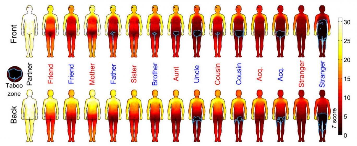 Vive Sana: Mapa de calor del cuerpo humano muestra dónde aceptamos ...