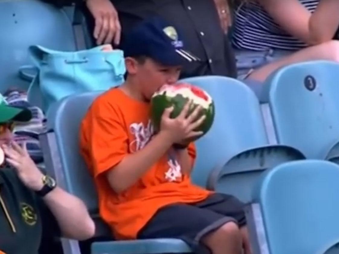 watermelon boy cricket