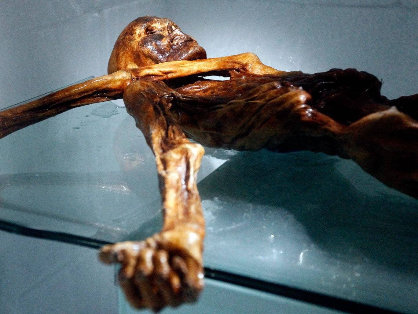 scientific dating techniques used on otzi Otzi also called otzi the iceman, the similaun  the latest scientific findings provide interesting information on the dietary patterns of the neolithic iceman.
