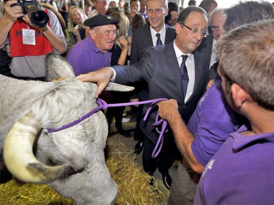 pg-36-french-farming-2-reut.jpg