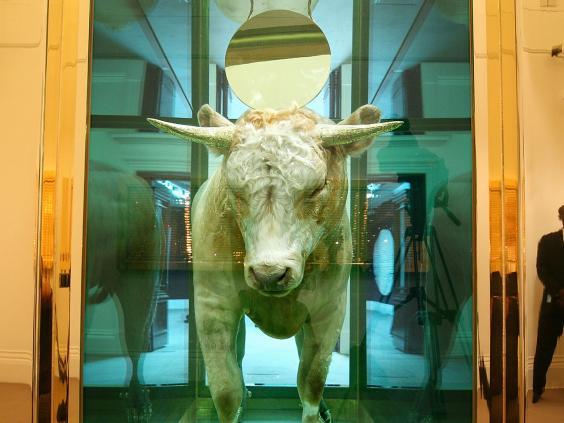 hirst-2-calf-crop.jpg