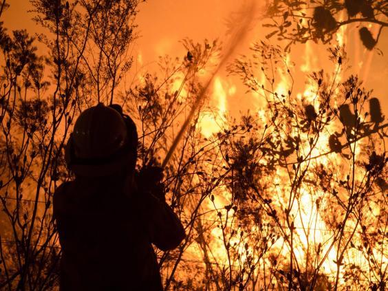 australia-fire-11.jpg