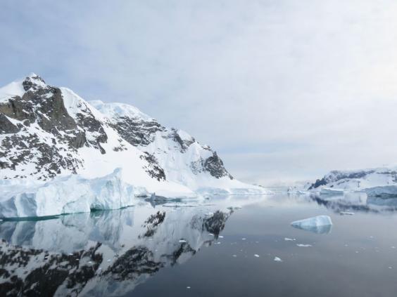 antartic2.jpg