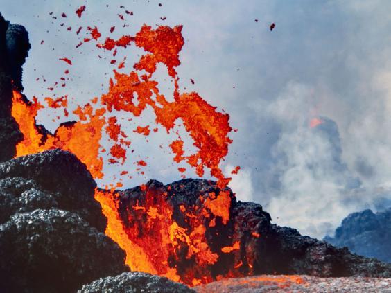 volcano-rex.jpg