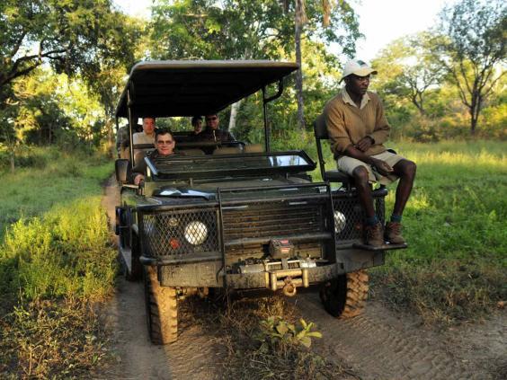 safarithomson.jpg