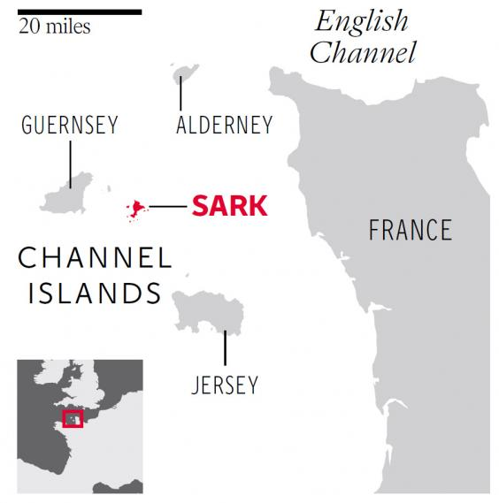 web-sark-graphic.jpg