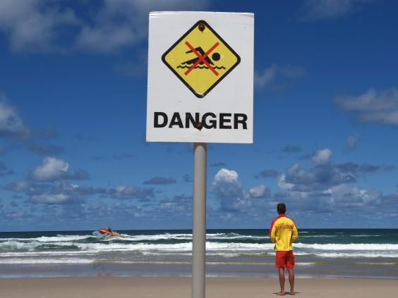 shark-attack-australia1.jpg