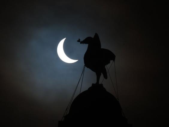 solar-eclipse_17.jpg