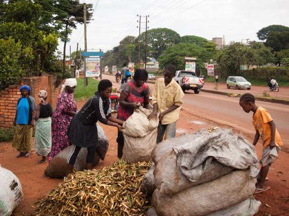uganda-bananas-afp-getty.jpg