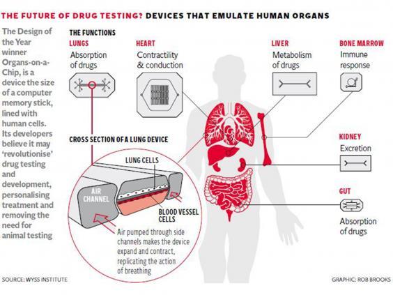 10-Cancer-Graphic.jpg