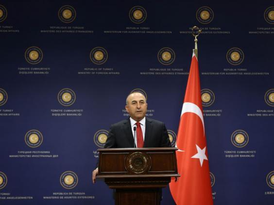 31-Cavusoglu-AFP.jpg