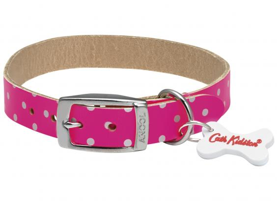 dog collar sizes by breed