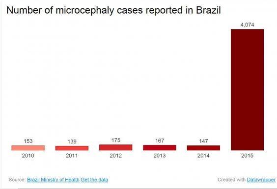 Microcephaly-chart.jpg