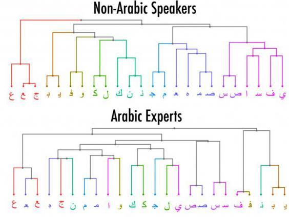 visual-arabic-speakers.jpg