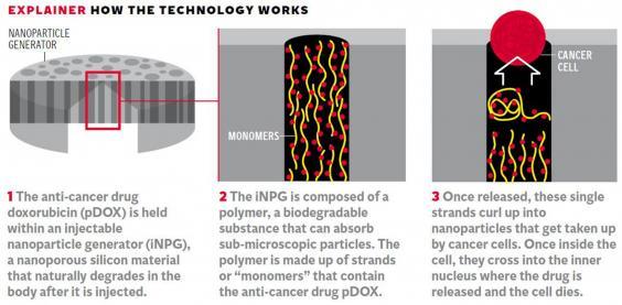 11-science-graphic.jpg