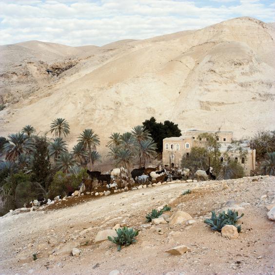 Palestine-wadi-q.jpg