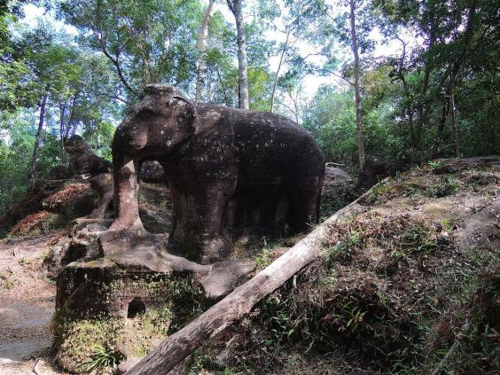 elephant_cambodia_2.jpg