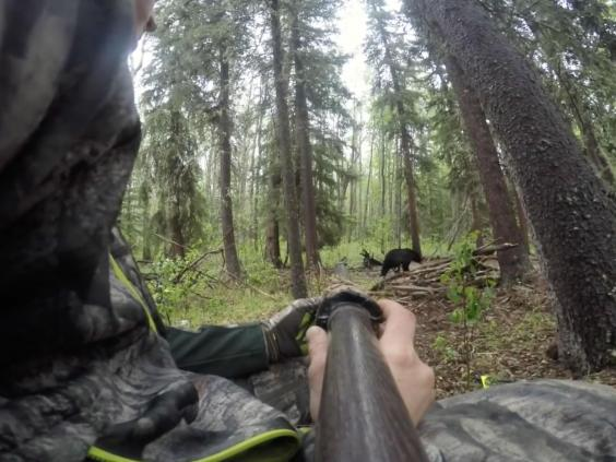 Spear hunting already illegal in Ontario; Alberta aiming to introduce ban