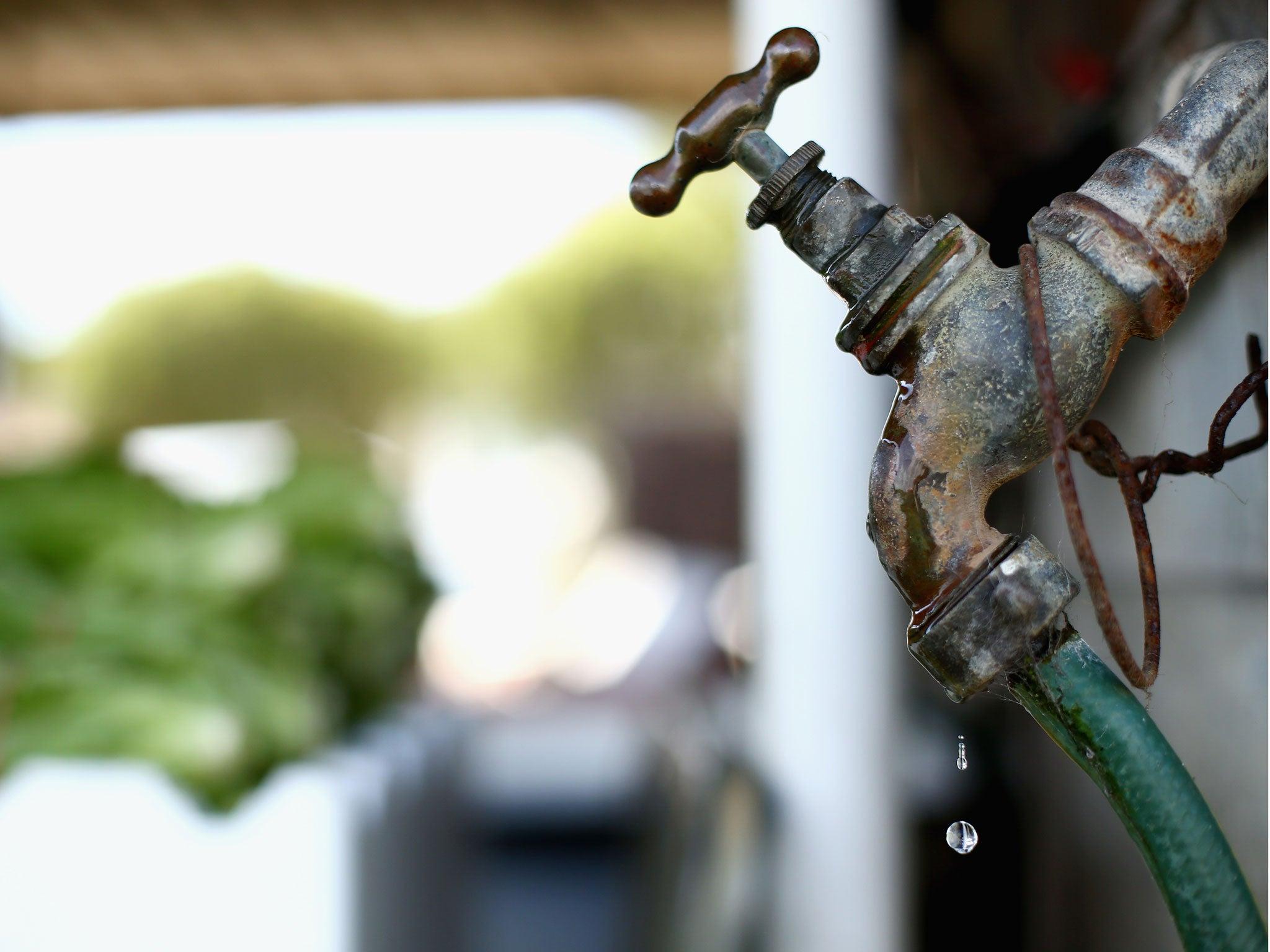 Deadly Parasite List Tap Water Brain Amoeba