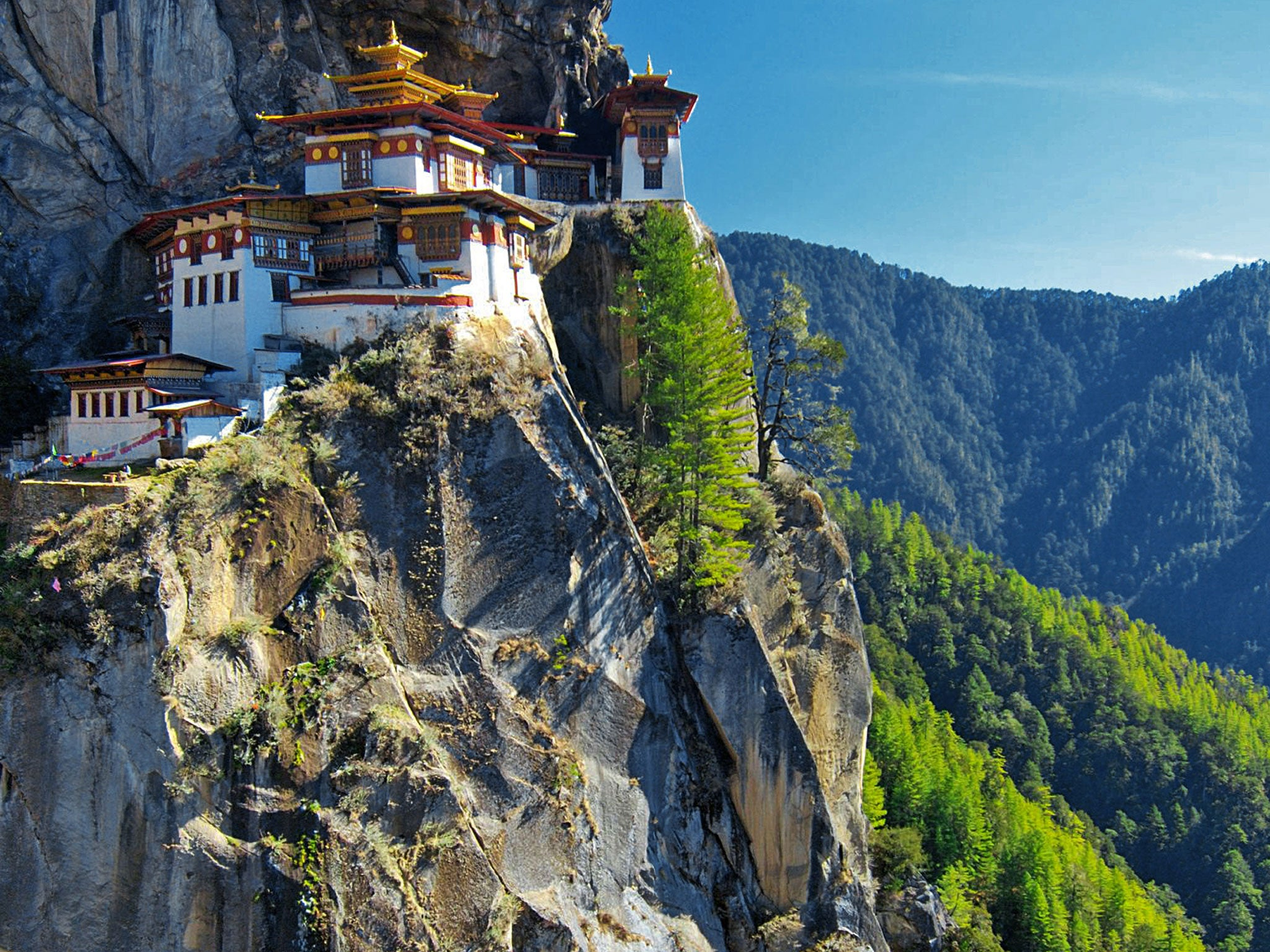 Traveller's Guide: Bhutan | Asia | Travel | The Independent