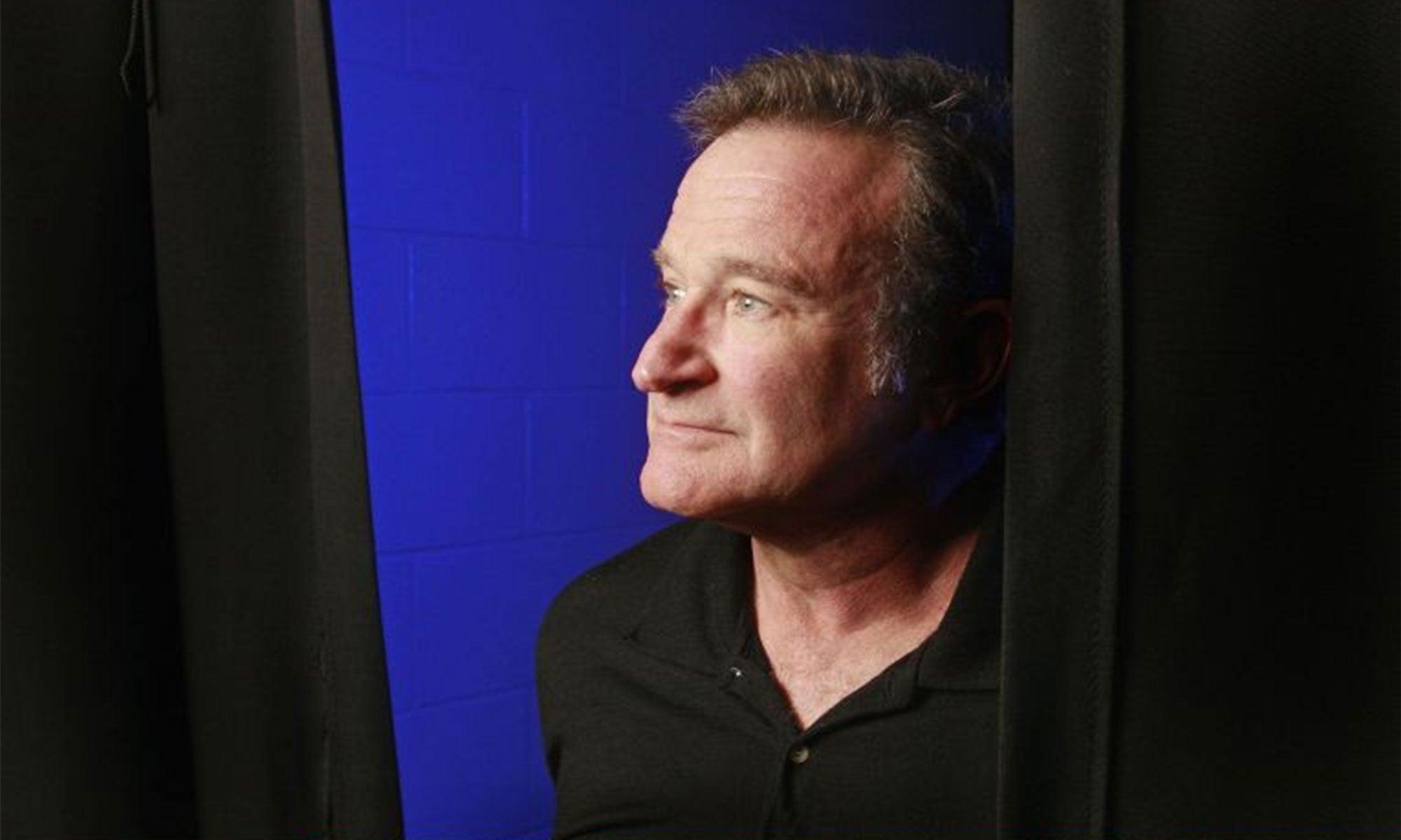 Robin Williams Books Design