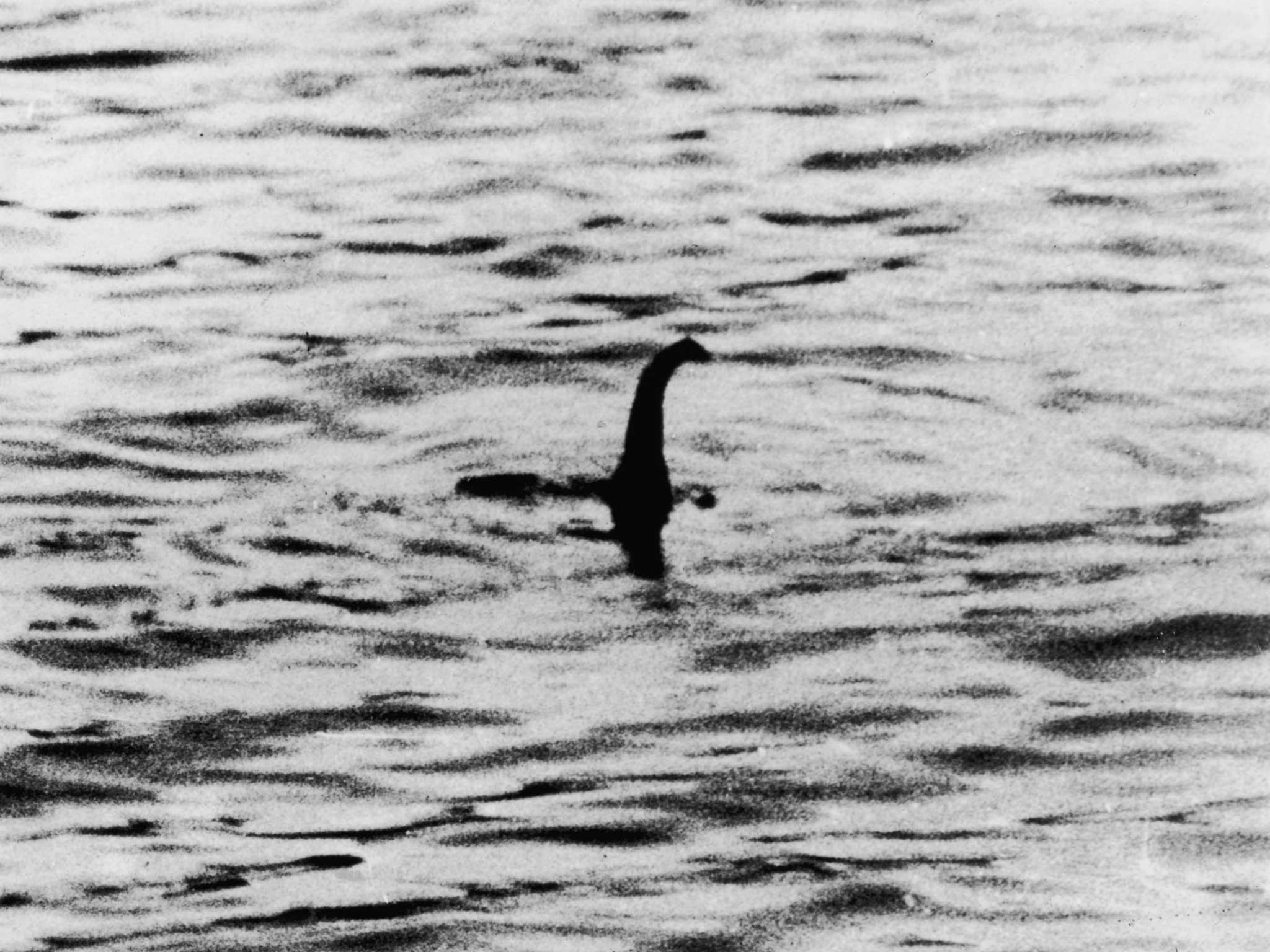 "loch ness gay personals The loch ness monster, like bigfoot and alien abduction, is now considered a myth unworthy of scientific investigation but before that myth was debunked, mit's harold ""doc"" edgerton, sm."