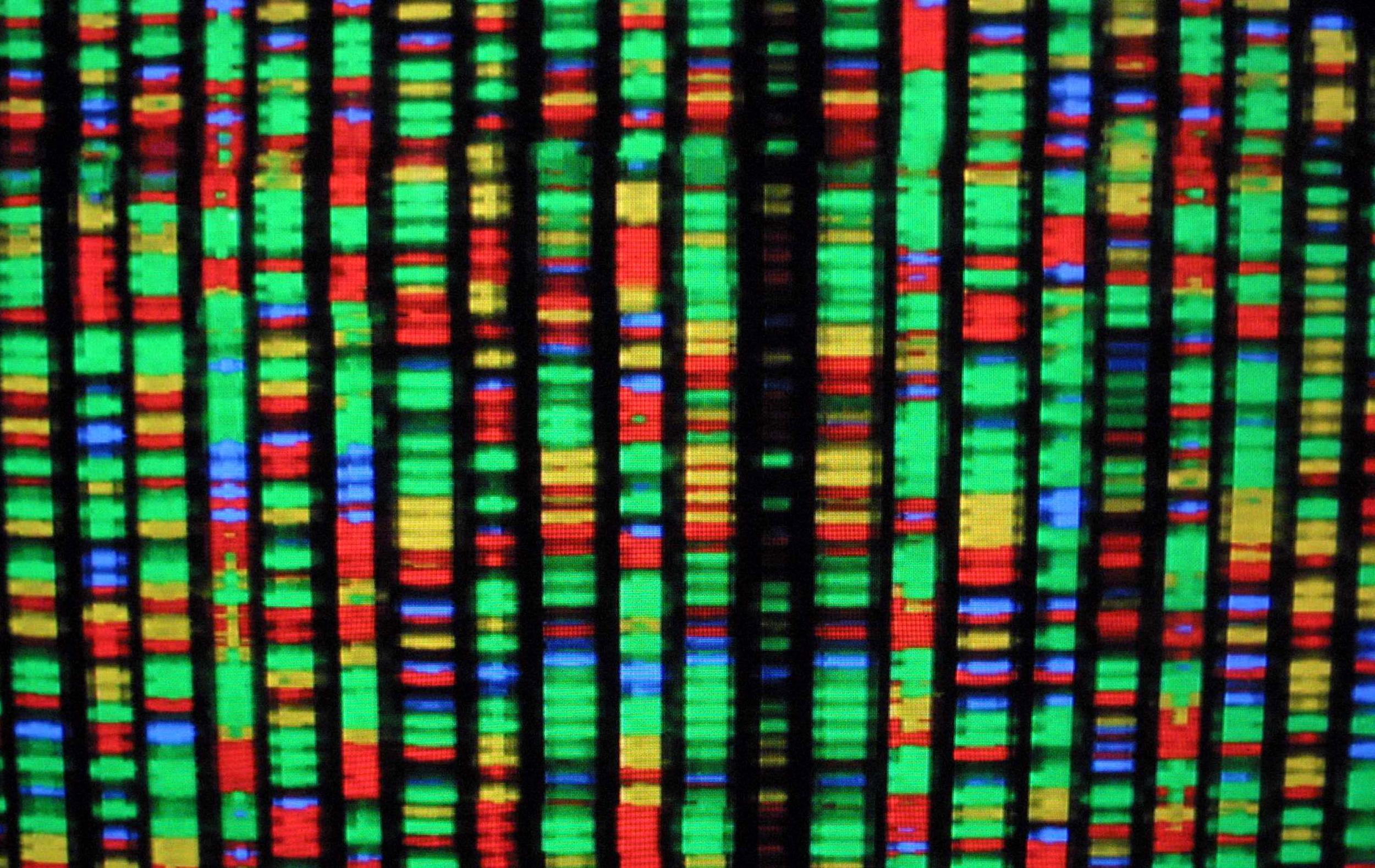 Scientists call for global drive to create the first ever synthetic human genome | Science | News | The Independent