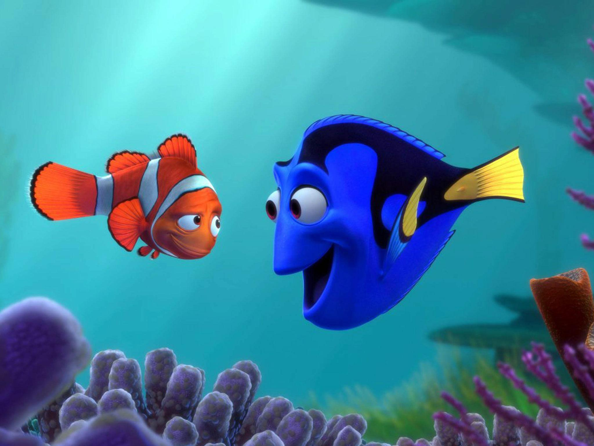 essay on finding nemo < homework help essay on finding nemo