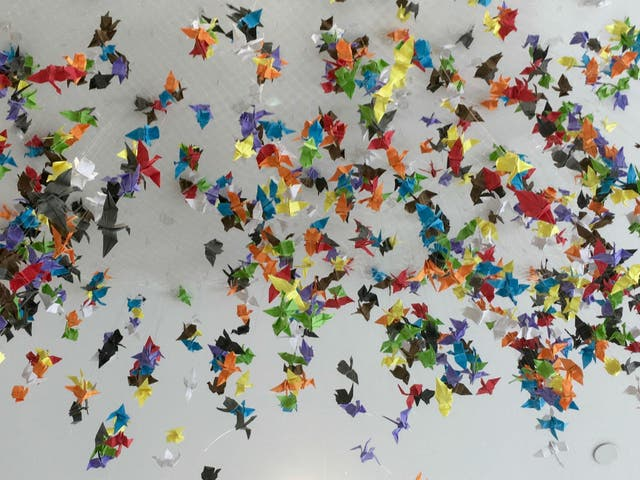 """A Mexican teenager made 1,000 origami cranes for his high-school sweetheart, which he told her would grant her a wish, according to an old Japanese legend. """"I know these cranes represent all his feelings about our relationship: all the love he had, all the blame for the mistakes made, all of it,"""" hun skrev. """"I never counted the cranes. I know there are a thousand: I trust him."""""""