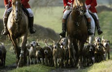 Police charge hunting chief after webinars leak