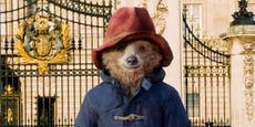 Paddington 2 loses perfect Rotten Tomatoes score after bad review calls the character 'snide and sullen'