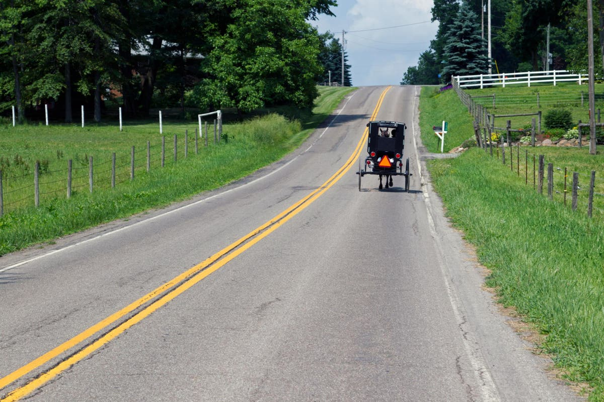 Two parents killed and eight children injured in Amish buggy crash